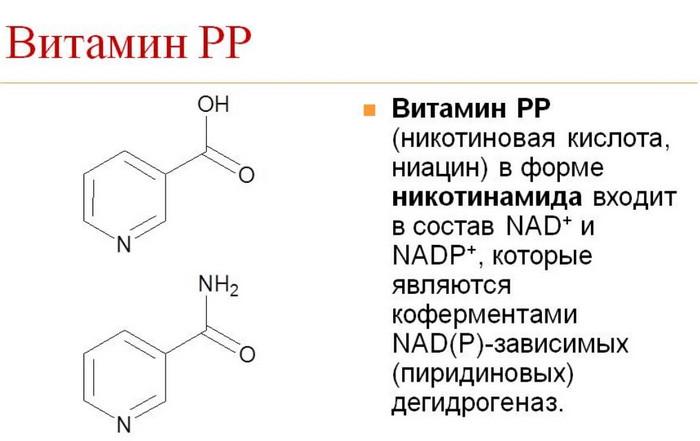 никотиновая кислота состав